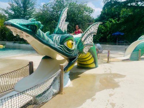 Schlitterbahn dragon